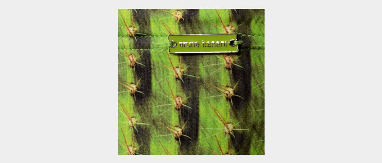 cactus-bb