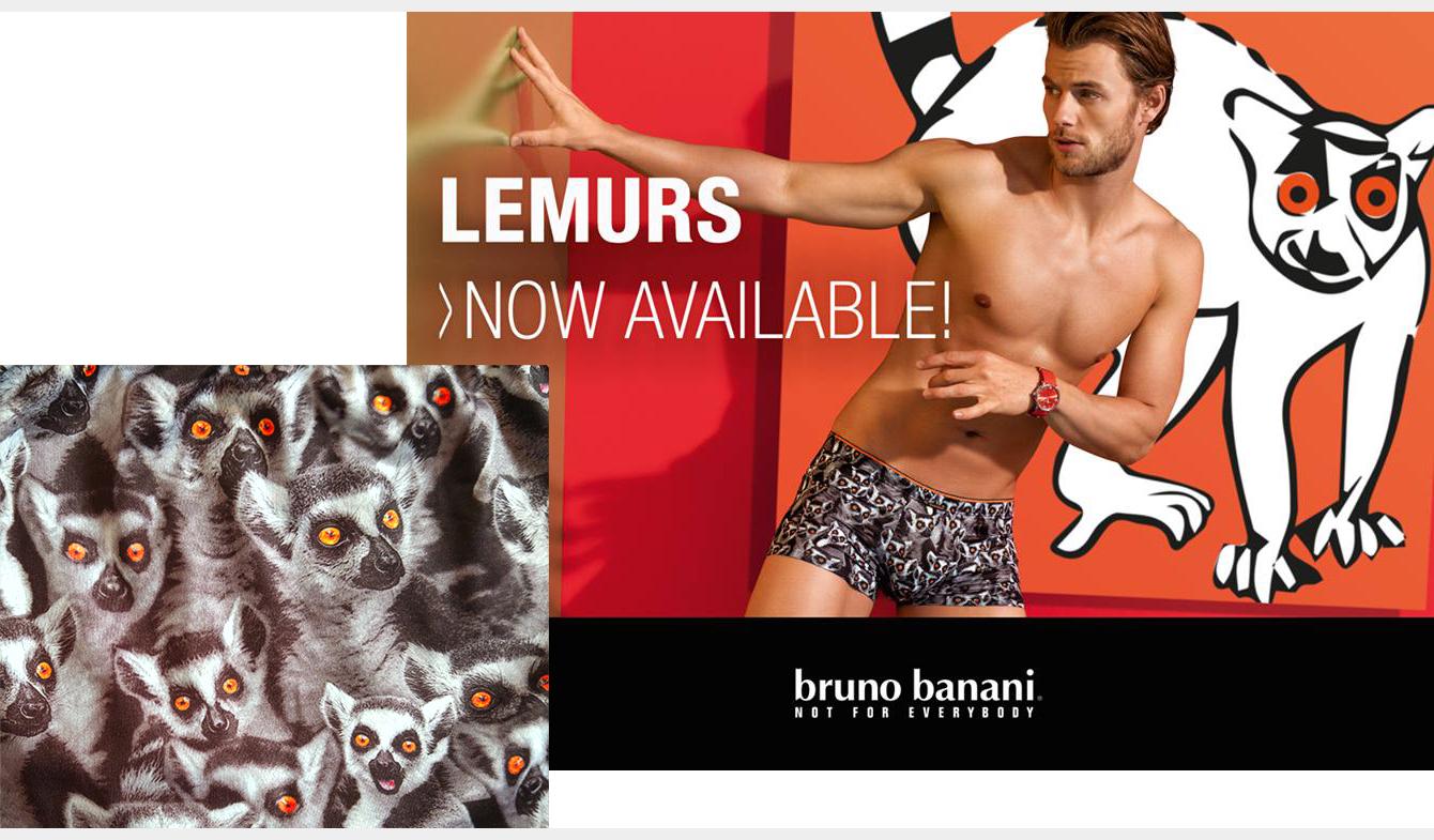 lemurs-BB